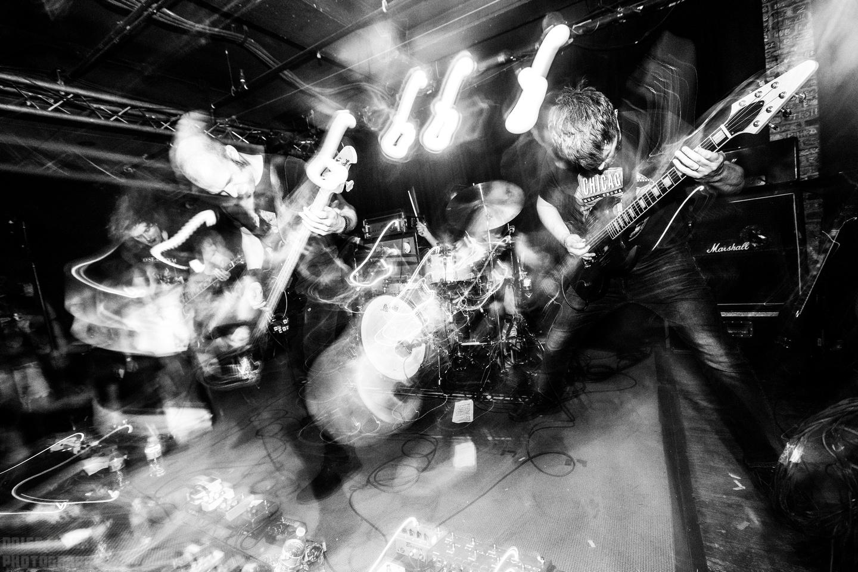Noise Floor Photography: 2019/06/23 - Pelican &emdash;