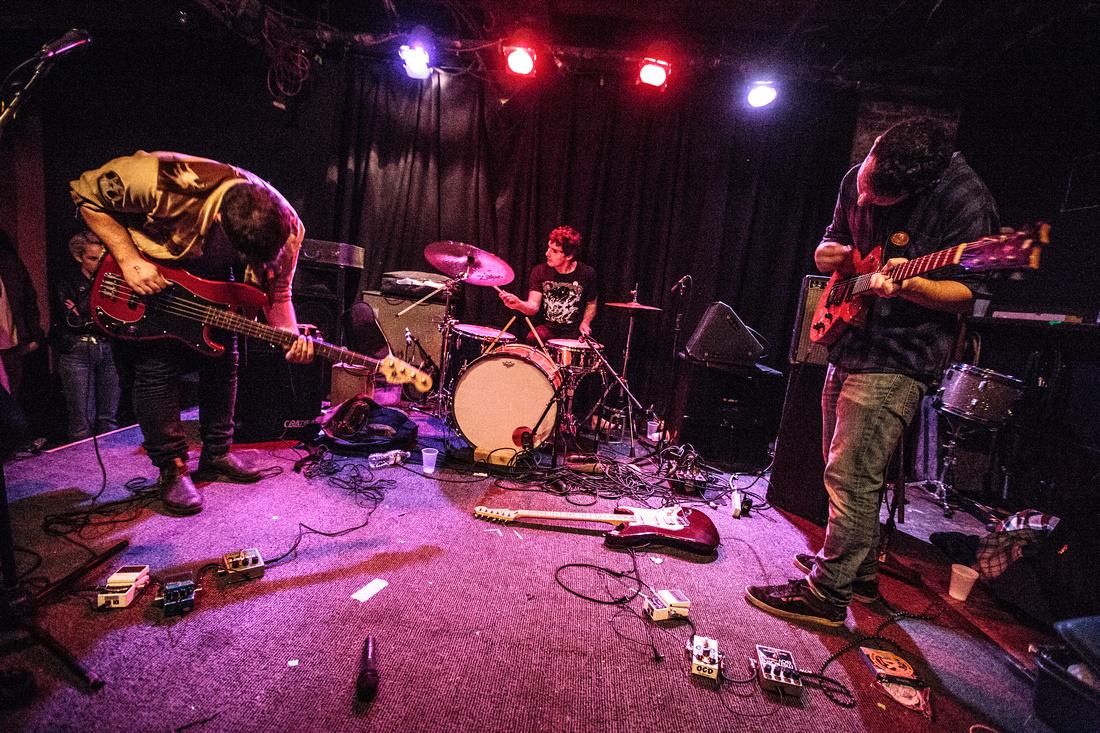 Noise Floor Photography: Great Scott Photo Sale &emdash; Krill